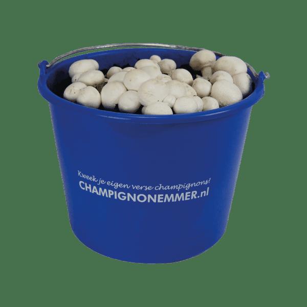 champignonemmer